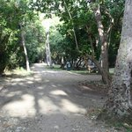 Main pathway at campground