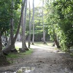 Main pathway in Campground