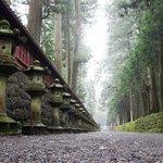 Nikko Futarasan Jinja Shrine (paseo desde Toshogu Shrine)