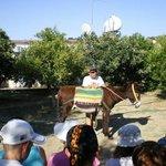 Dipotamos Donkey Farm