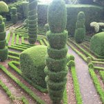 Want some inspiration for your hedges back home?