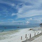 """Der """"Ausblick"""" von der Anlage auf den Strand"""