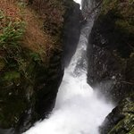 Aira Force (fromt he top bridge)