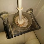 Toujours et encors la brosse des toilettes