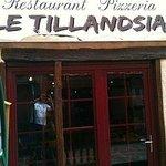 Photo of Le Tillandsia