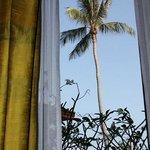 Palme am Morgen
