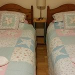 homey bed lining