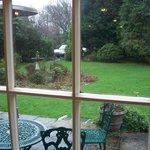 View of 'garden'