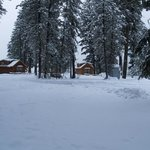 Winter in the park by the Deluxe Cabins