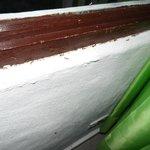 Hormigas al interior de la habitación