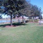 Walking around the grounds