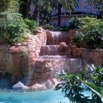 Waterfall by the pool