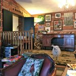 Main Inn, Common Area with TV and comfy seating and Angus The Dog