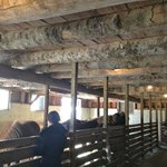 Main barn with Horses
