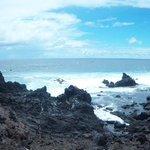 costa de piedra volcánica