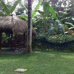 Garden and pandok