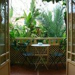 Terrace in the rainforest???