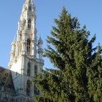 Brussels Town Hall & Belfry