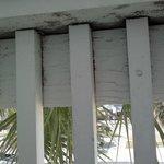 the black mold on the balcony