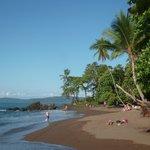 cocalito beach
