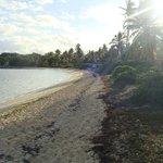 Tahiti Beach Sunrise