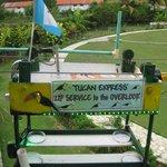 Toucan Express from veranda to lakeside patio