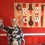 Crazy Cow!