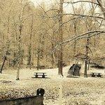 Bg Ridge State Park in February