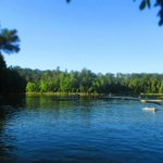 Bg Ridge State Park in July