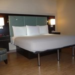 King Bed Available in Guest Rooms & Suites