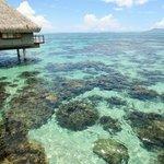 gorgeous lagoon