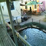 view from our private room of the goldfish pond and the dining areas