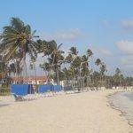 Playa fte hotel