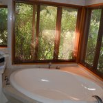 Deluxe tub looking out into garden (privacy afforded by oleanders