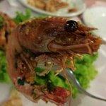 Sorria camarão! !!