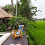 View for Pool edge overlooking rice fields