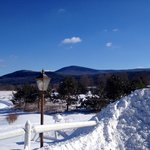 Beautiful & snowy backyard