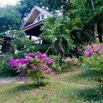 Our honeymoon hut.