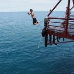 Live, dive & jump