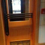 Brass Bison detail on door