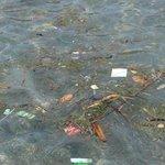 Состояние моря у пляжа в Чандидасе