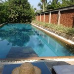 Tamarind Hill Hotel - the pool.