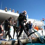 Reef diving sharm ! !