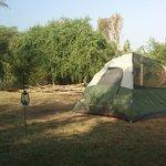 Standard Tents