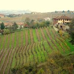 Cascina d R. on right above vineyard