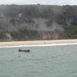 Baia dos Golfinhos