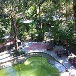 piscine au milieu du jardin