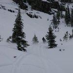 Photo de Bone Creek Wilderness Retreat