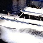 Never Monday Charters