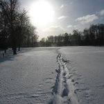 Snowshoeing on the golf course